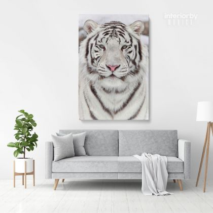 White Tiger Canvas Wild Animals Photography Canvas Photo Print Poster / Rolled Canvas Wall Artwork ation Wall Mural Hangings Gift