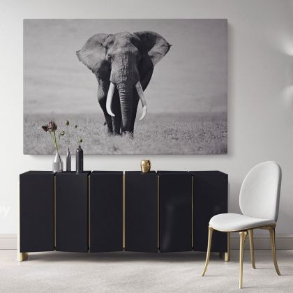 Black and White Elephants Photography Canvas Print Poster Love Wall Arts Housewarming Gift Wild Animals Photo Wall Mural Hangings