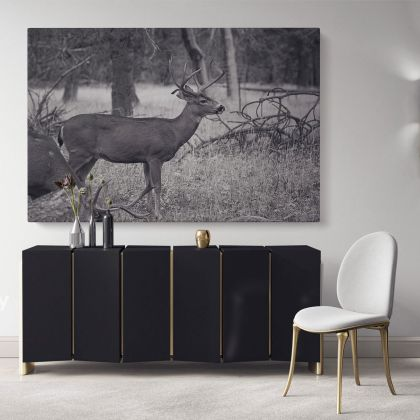 Reindeer Black and White Photography Canvas Print Poster Love Wall Art Housewarming Gift Wild Animals Photo Wall Mural Hanging