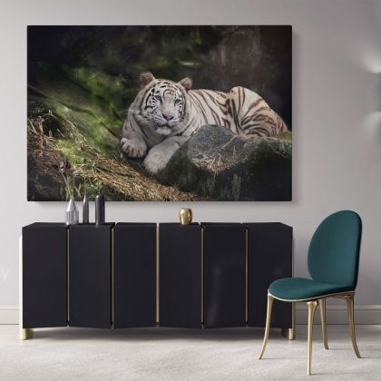 White Tiger Canvas Photography Canvas Photo Print Poster White Tiger Wild Animals Photo Wall Art Mural Hangings Gift Living Room