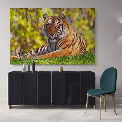 Large Tiger Photo Canvas Wild Animals Photo Print Poster Photography Wall Artwork Gift Wall Mural Hangings Living Room Bedroom