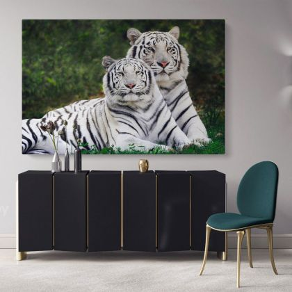 Large White Tiger and Cub Canvas Photography Photo Print Poster White Tiger Wild Animals Wall Art Mural Hangings Gift Living Room