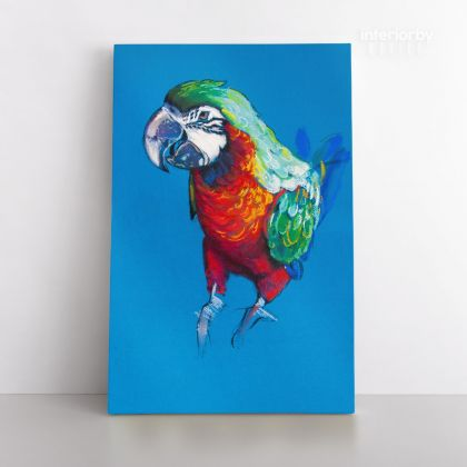 Bird Psittacidae Aratinga Parrot Original Pastel Painting Posters Print Canvas with Frame
