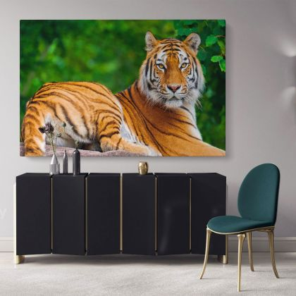 Large Tiger Canvas Photography Canvas Photo Print Poster Love Wall Artwork Gift Wild Animals Photo Wall Mural Hanging Living Room
