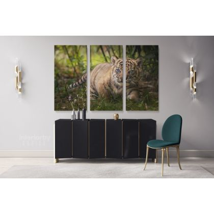 Tiger Cub Canvas Photography Canvas Photo Print Poster Newborn Tiger Cub Wild Animals Photo Wall Mural Hangings Gift Living Room