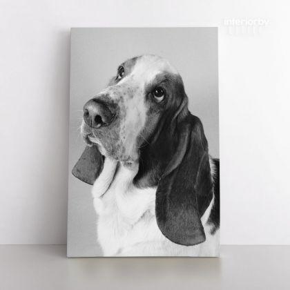 Personalized Dog Portrait Canvas Custom Pet Portrait Dog Canvas