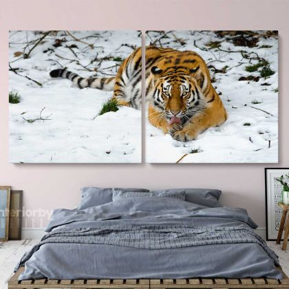 Panoramic Large Tiger Canvas Photography Photo Print Poster Wall Artwork