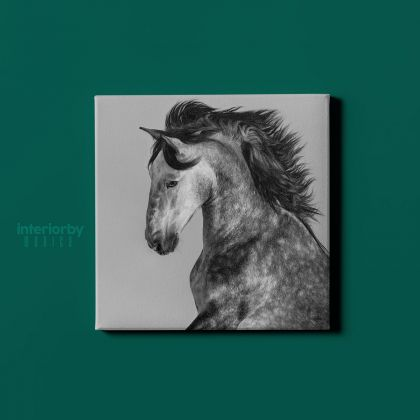 Horse Lovers Dapple Grey Spanish Horse Canvas with Frame